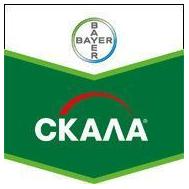 Скала - фунгицид, 5 л, Bayer CropScience (Байер), фото 1