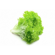 Фриллис - семена салата, 5 000 и 10 гр семян, Seminis/Семинис (Голландия), фото 1