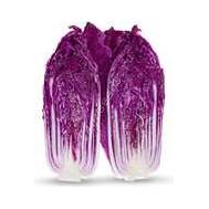 кс 888 F1 - капуста пекинская, пурпурная, 1000 с и 2500 с, Kitano (Китано) Япония, фото 1