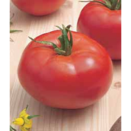Султан F1 - томат детерминантный, 5 и 25 гр., Bejo/Бейо (Голландия), фото 1