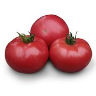КС 38 F1 - томат индетерминантный (розовый), 100 и 1000 семян, Kitano (Китано), фото 1