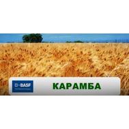Карамба - фунгицид для контроля альтернариоза и фомоза озимого и ярового рапса, 5 л, BASF (Бас), США, фото 1