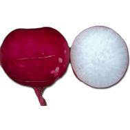 Мисато Ред - семена редьки Дайконе, 50 и 500 гр, Sakata seeds/Саката сидз (Япония), фото 1