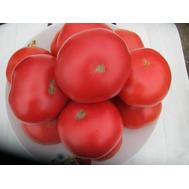 Пинк Парадайз F1 - семена томатов, 20 и 500 семян, Sakata seeds/Саката сидз (Япония), фото 1
