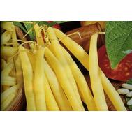 Унидор - фасоль, 100 000 семян, Seminis (Семинис) Голландия, фото 1