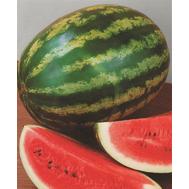 АУ Продюссер - семена арбуза, 500 гр, Hollar Seeds/Холлар Сидз (США), фото 1