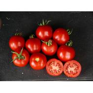 Шаста F1, семена томатов, 50 и 10.000 с., Clause, Франция, фото 1