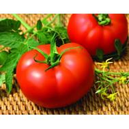 Махитос F1- семена томатов, 100 и 1 000 семян, Rijk Zwaan/Райк Цваан (Голландия), фото 1