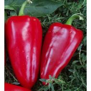 Богатырь F1 - семена перца сладкого, 500 гр, Поиск, фото 1