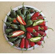 Сонора F1 - семена перца острого, 500 семян, Sakata seeds/Саката сидз (Япония), фото 1