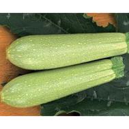 Азов F1 - семена кабачка, 1 000 семян,  Sakata seeds/Саката сидз (Япония), фото 1