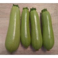 Байкал F1 - семена кабачка, 1 000 семян,  Sakata seeds/Саката сидз (Япония), фото 1