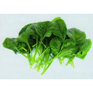 Гелиос F1 - семена шпината, 500 гр, Sakata seeds/Саката сидз (Япония), фото 1