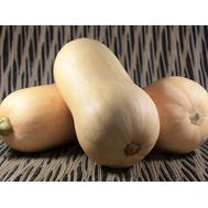 Тиана F1 - семена тыквы, 500 семян (стандарт и organic), Enza Zaden/Энза Заден (Голландия), фото 1