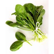 Союз F1 - семена шпината, 500 гр, Sakata seeds/Саката сидз (Япония), фото 1