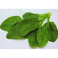 Спутник F1 - семена шпината, 500 гр, Sakata seeds/Саката сидз (Япония), фото 1