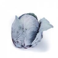 Редма РЗ F1 - капуста краснокочанная, 1 000 и 2 500 семян, Rijk Zwaan/Райк Цваан (Голландия), фото 1