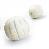 Агустино F1 - семена дыни, 100, 500 и 1 000 семян, Rijk Zwaan/Райк Цваан (Голландия), фото 1