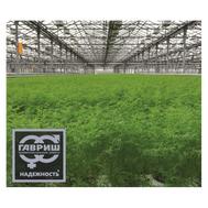 Арбалет - семена укропа, 100 и 1 000 гр., Гавриш/Gavrish (Россия), фото 1