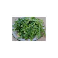 Гурман - семена рукколы (дикая тонколистная), Гавриш/Gavrish (Россия), фото 1