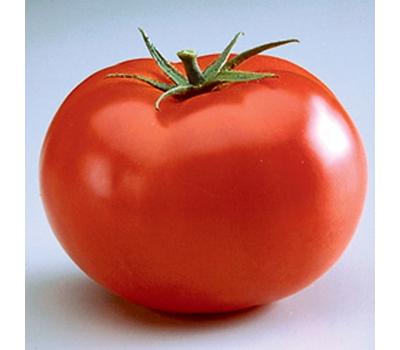 Биг Биф F1 - томат индетерминантный, 500 семян, Seminis/Семинис (Голландия), фото 1