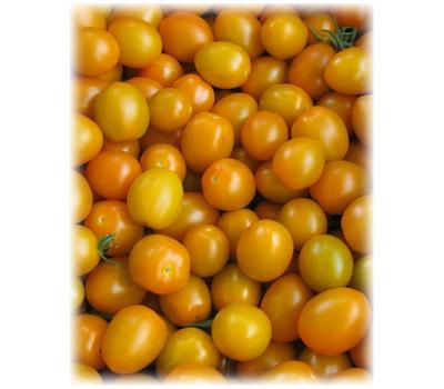 Кэнди F1 - семена томатов, Гавриш/Gavrish (Россия), фото 1