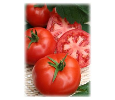 Митридат F1 - семена томатов, 100 и 1 000 семян, Гавриш/Gavrish (Россия), фото 1