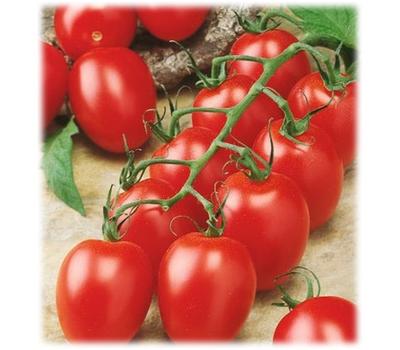 Оригами F1 - семена томатов, 100 и 1 000 семян, Гавриш/Gavrish (Россия), фото 1