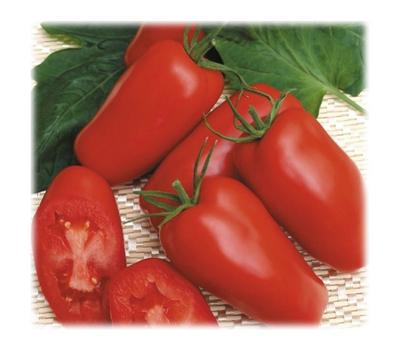 Гаспачо - семена томатов, Гавриш/Gavrish (Россия), фото 1