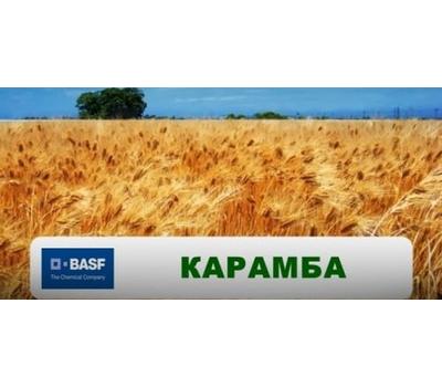 Карамба, фото 1
