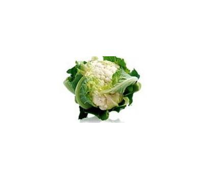 Опаал F1 - семена капусты цветной, Rijk Zwaan/Райк Цваан (Голландия), фото 1