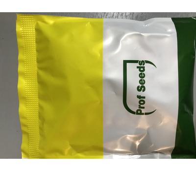 Мария F1 - семена огурца партенокарпический, 50 и 1000 семян, Sakata seeds/Саката сидз (Япония), фото 5