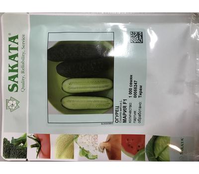 Мария F1 - семена огурца партенокарпический, 50 и 1000 семян, Sakata seeds/Саката сидз (Япония), фото 2
