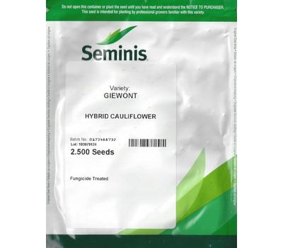 Гивонт F1 - семена капусты цветной, 2 500 семян, Seminis/Семинис (Голландия), фото 2