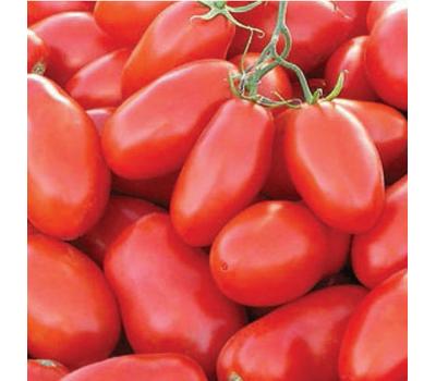 Тейлор F1 - томат для переработки, 1 000 и 5 000 семян, Nunhems/Нунемс (Голландия), фото 1