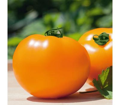 Сахара F1 - семена томатов, Гавриш/Gavrish (Россия), фото 1