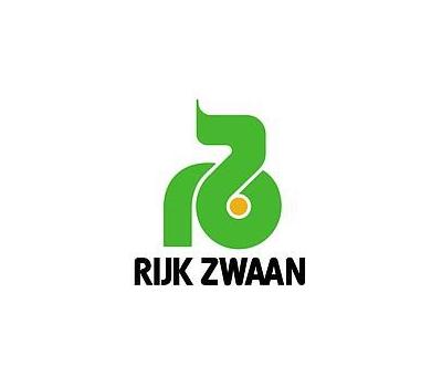 Рафаэль - салат мини - ромэн, 1 000 и 5 000 семян драже, Rijk Zwaan/Райк Цваан (Голландия), фото 5
