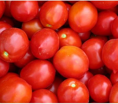 Роксет - семена томатов, Гавриш/Gavrish (Россия), фото 1