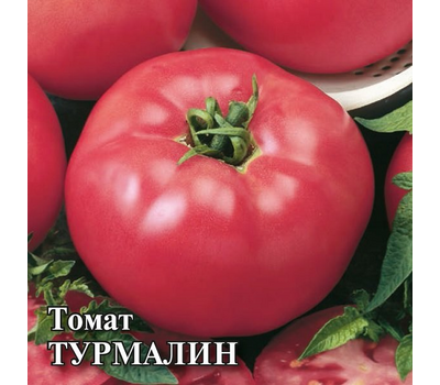 Турмалин - семена томатов, Гавриш/Gavrish (Россия), фото 3
