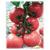 Розарио F1 - семена томатов, Гавриш/Gavrish (Россия), фото 1