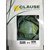 Сир F1 - семена капусты белокочанной, 2 500 семян, Clause/Клаус (Франция), фото 3