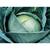 Агрессор F1 - капуста белокочанная, 2 500 и 10 000 семян, Syngenta/Сингента (Голландия), фото 1