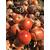 Семена лука Ретона F1 (Эталон), фото 1