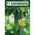 Карамболь F1 - семена огурца пчелоопыляемого, Гавриш/Gavrish (Россия), фото 3
