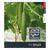 Ярый F1 - семена огурца партенокарпического, 1 000 семян, Гавриш/Gavrish (Россия), фото 4
