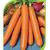 Монанта - семена моркови, Rijk Zwaan/Райк Цваан (Голландия), фото 1
